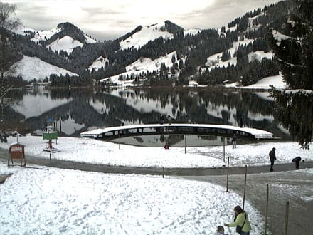 Webcam du Lac noir